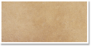 Stain Color Option 4: Golden Wheat Stain